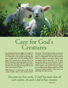 Thumbnail of Care for God's Creatures: A Christian Education Resource